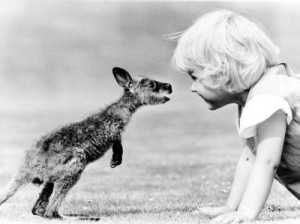 Baby-kangaroo-and-girl-smelling-each-other-John-Drysdale-200357